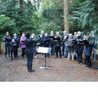 Sang i skoven med Messiaskirkens Koncertkor