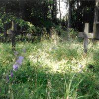 Rundvisning på Mariebjerg Kirkegård